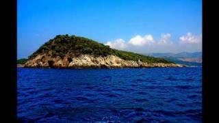 Zedd - The Anthem (Original Mix)