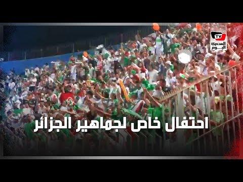 54168405d جماهير الجزائر تحتفل بالفوز على غينيا بثلاثية