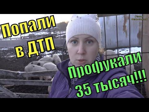 Попали в ДТП. Профукали 35тысяч! // Семья Фетистовых