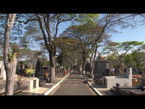 Cemitério da Vila Euclides promove tour cultural