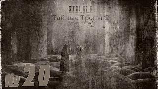 STALKER Тайные тропы 2 + Autumn Aurora 2 №20