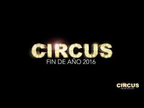 ¡Nochevieja Circus!