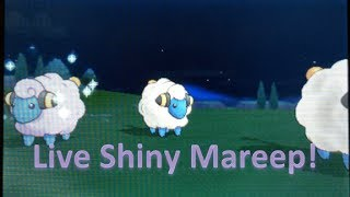 Mareep  - (Pokémon) - LIVE!! Shiny Mareep in Pokemon X!