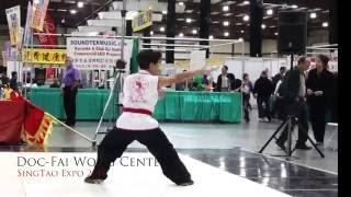 Kung Fu Tai Chi Demo SingTao Expo 2016 - Doc-Fai Wong Center