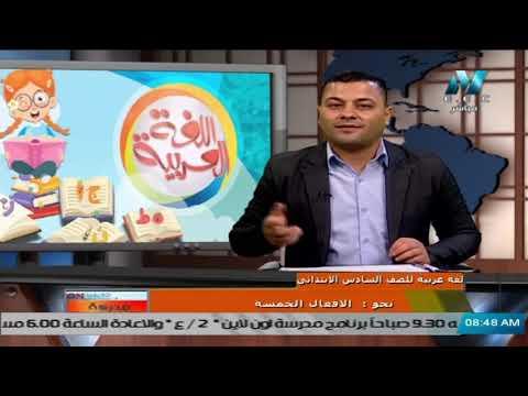 لغة عربية للصف السادس الابتدائي 2021 ( ترم 2 ) الحلقة 7 - نحو : الافعال الخمسة