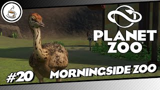 Er plant den Ausbruch #20 «» Morningside Zoo 🇳🇿🐅 - PLANET ZOO AQUATIK DLC   Deutsch German