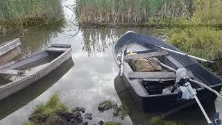 Электромоторы для лодок отзывы форум