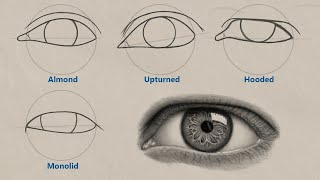 How To Draw Different Eye Shapes | UNIQUE