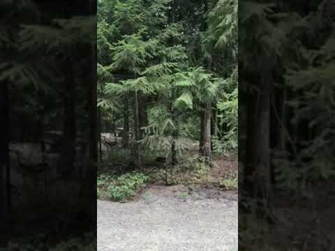Video Of Smith Lake Campground, ID