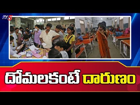 Private Hospitals Looting Public Money In the Name Of Viral Fevers | TV5 News