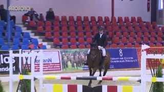 Vechta Hallenchampionat 2015 Prüfung 14/1 Sieger