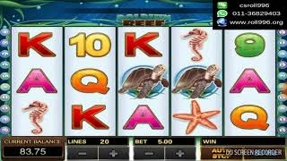 918Kiss Dolphin Reef - Ultra Mega BIGWIN At Roll996