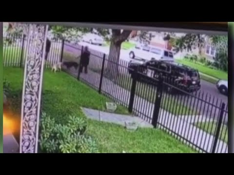 Video of Detroit police officer fatally shooting dog through fence goes viral