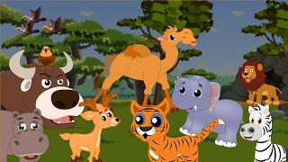Divoké zvieratá |  Karikatúra pre deti | Zvuky zvierat | Krokodíl, gorila, hroch, vkl, slon