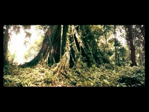 Ongbak 3 Trailer with English Subtitle Video