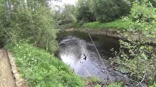 Рыбалка на реке морье ленинградская областье