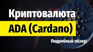 Обзор Cardano - Где купить, Кошелек Daedalus, Прогноз.