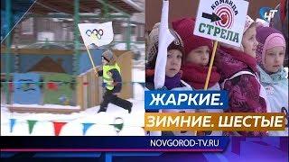 В Великом Новгороде в шестой раз прошли детсадовские Олимпийские игры