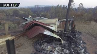 Беспилотник заснял последствия лесных пожаров в Португалии