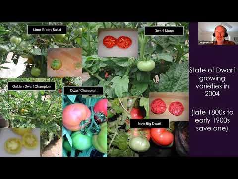 , title : 'Dwarf Tomato Breeding Webinar with Craig LeHoullier