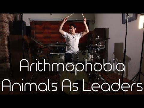 "Drum Cover of ""Arithmophobia"" by Animals As Leaders"