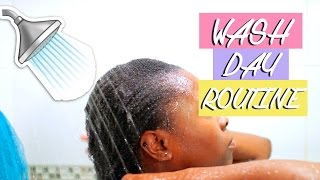 Wash Day Routine - Natural Hair
