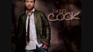 David Cook-I Did It For You