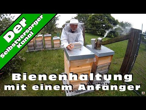 , title : 'Bienenhaltung mit einem Anfänger
