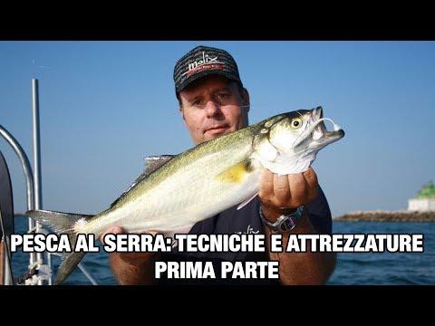 La pesca su cerchi su una picca