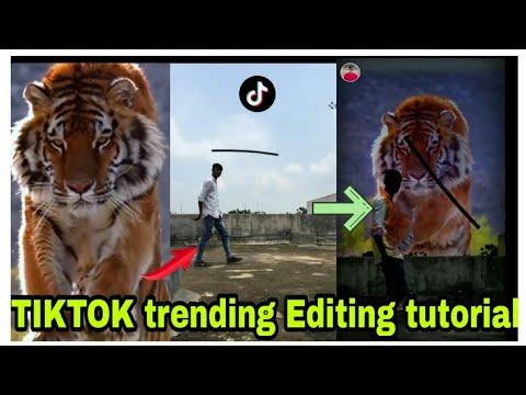 Tiger Tik Tok trick editing/ King master app /.mizan edits