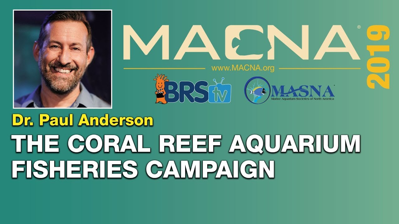 Dr. Paul Anderson : Empowering sustainable development of the marine aquarium industry | MACNA 2019