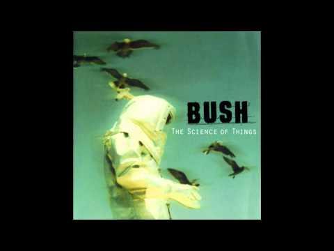 Bush - Dead Meat