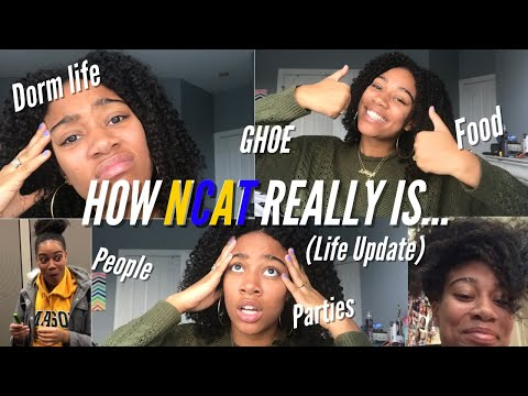 HOW NCAT REALLY IS | my experience (life update)