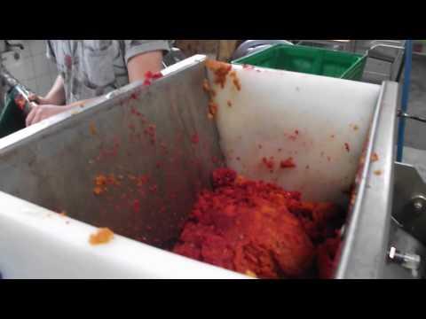 Maquina cold press jugo rojo de verdura: zanahoria, manzana...(mas informacion: christoph.weidinger)