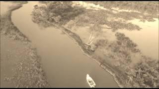VIDEO: Jungle Tarpon, Costa Rica