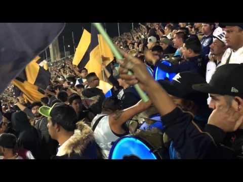 """""""La rebel yo paro en una barra, pumas vs tigres final clau (15)"""" Barra: La Rebel • Club: Pumas"""