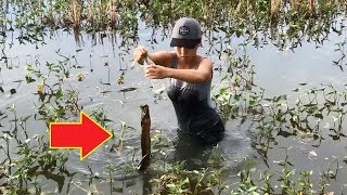 Best Fish Trap Catch Giant Eel Fish with Survival Skills