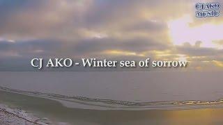 CJ AKO   Winter sea of sorrow очень простая красивая мелодия на синтезаторе пианино Piano Самая