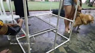 How To DIY PVC Cat Cage Under 100 Dollar