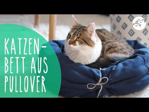 Katzenbett aus Pullover selber machen! DIY Upcycling Katzenkissen