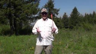 WebXtra May: Black Eagle Arrows Field Test
