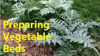 Preparing vegetable beds and HUGE plants