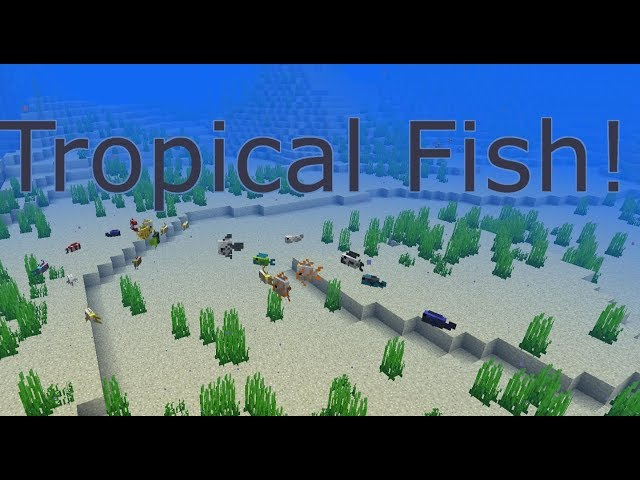 18w10b - Tropical Fish | Minecraft: Snapshot