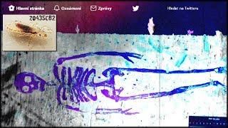 Video ZQ435c82: Pt46
