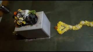 Shree yogeshwar Shankar mandir(Nagara panchami)