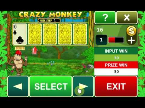 Video of Crazy Monkey slot machine