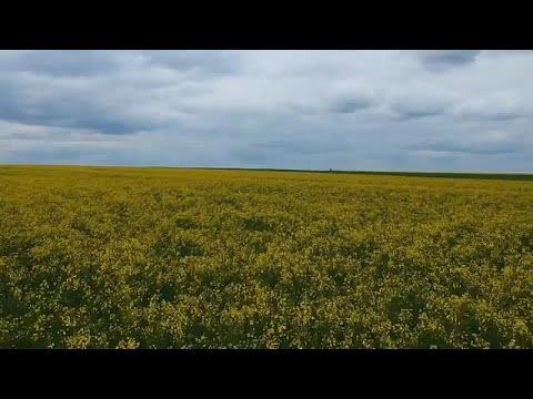 43η ημέρα του #EURoadtrip: Oι αγρότες της Αυστρίας