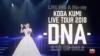 倖田來未 / 「KODA KUMI LIVE TOUR 2018 ~DNA~」SPOT