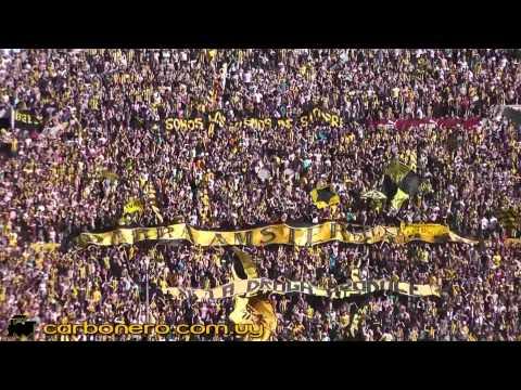 """""""Peñarol - Barra Ámsterdam (Gilda - No me arrepiento de este amor)"""" Barra: Barra Amsterdam • Club: Peñarol"""