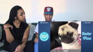"""Couple Reacts : Impossible """"Try Not To Laugh Or Grin"""" Challenge By Master Vines Reaction!!"""